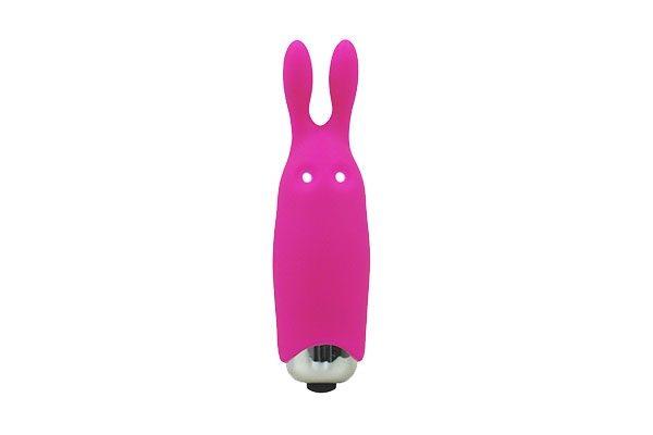 """Mini Vibrator """"Lastic Pocket Vibe"""""""